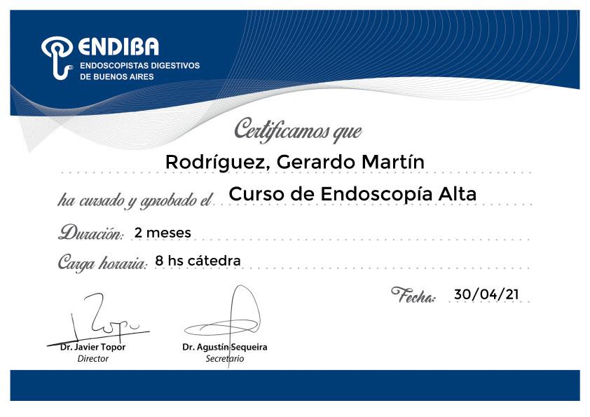 (Certificado) Curso de Endoscopía Alta – ENDIBA
